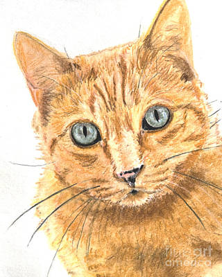 Domestic Short Hair Cat Painting - Orange Cat With Green Eyes by Kate Sumners