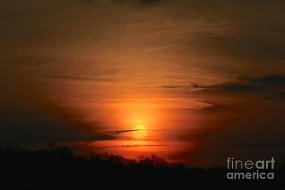 Photograph - Orange by Jay Nodianos
