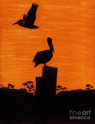 Pelican Drawing - Orange - Sunset - Pelicans by D Hackett