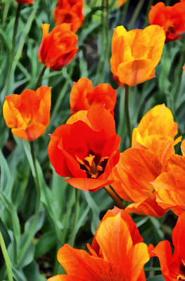 Closeup Print featuring the photograph Orange Tulip Splendor by Michelle Calkins