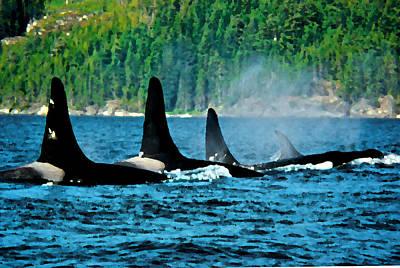 Orca Digital Art - Orca Family In Johnstone Strait by David Wei