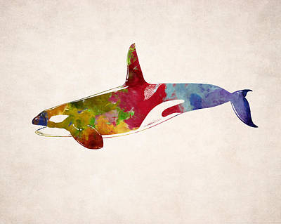 Orca - Killer Whale Drawing Print by World Art Prints And Designs