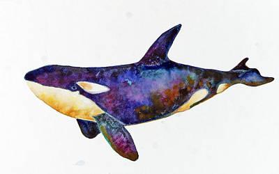 Orca Killer Whale Print by Michelle Scott