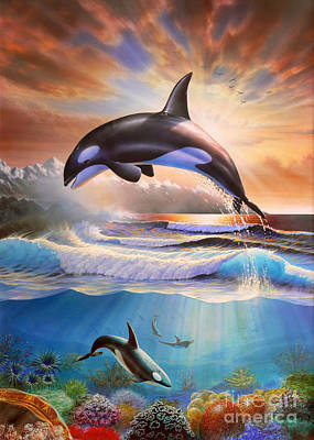 Orcas Print by Adrian Chesterman