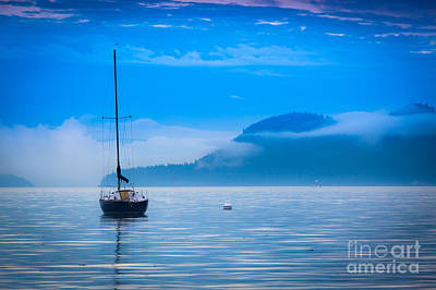 Orca Photograph - Orcas Sailboat by Inge Johnsson