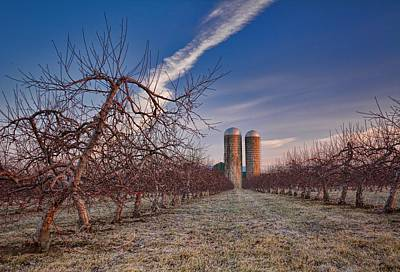 Orchard Waiting For Spring Print by Henry Kowalski