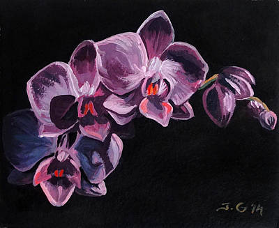 Orchid Print by Jana Goode