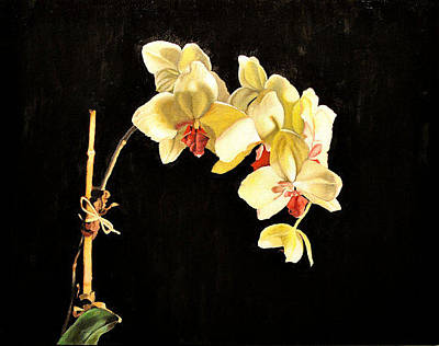 Orchid Original by Nick Patten
