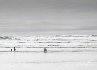 Oregon Coast Dogs Print by Andrea Hazel Ihlefeld