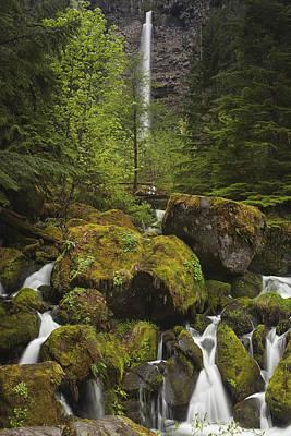 Vertical Photograph - Oregon's Watson Falls by Andrew Soundarajan