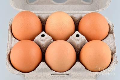Macro Photograph - Organic Eggs by George Atsametakis
