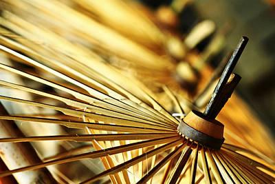 Suradej Photograph - Origin Of Umbrella by Suradej Chuephanich
