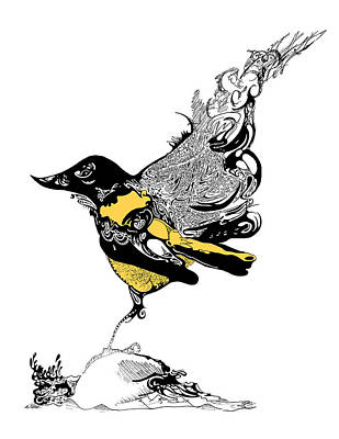 Orioles Drawing - Oriole by Ch' Brown
