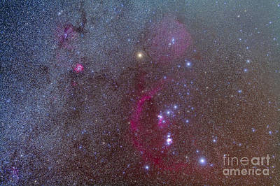 Monoceros Photograph - Orion And Monoceros Region by Alan Dyer