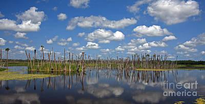 Orlando Wetlands Cloudscape 3 Print by Mike Reid