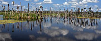 Orlando Wetlands Cloudscape 5 Print by Mike Reid