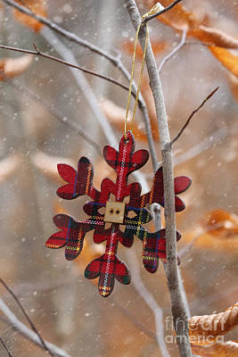 Ornament Hanging On Branch With Snow Falling Print by Sandra Cunningham