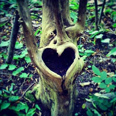 Magician Photograph - #oslo #landart #kunst  #nature #heart by Oriol Abella