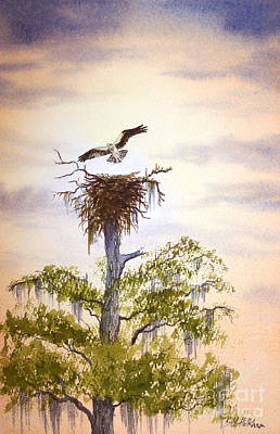 Osprey Painting - Osprey Approaching Nest by Bill Holkham