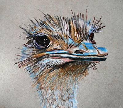Ostrich Head Original by Megan Melonas