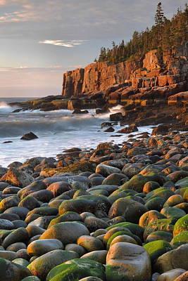 Otter Cliffs At Sunrise Print by Stephen  Vecchiotti