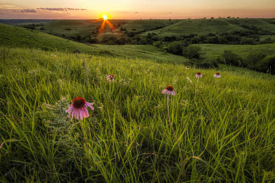 Out In The Flint Hills Print by Scott Bean