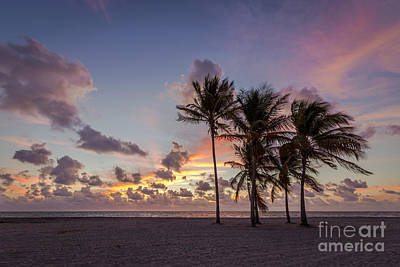 Key Biscayne Photograph - Out Of The Sky Came The Lights by Evelina Kremsdorf