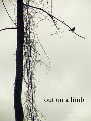 Out On A Limb Print by Joe Jake Pratt