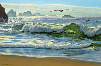 Pelican Painting - Over The Curl by Paul Krapf
