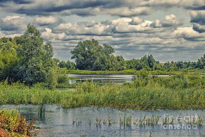 Overflowing Forelands River Print by Patricia Hofmeester
