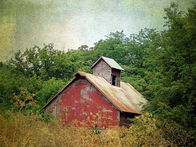 Iowa Digital Art - Overgrown And Abandoned by Cassie Peters
