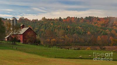 Barn Photograph - Ovine Morning by Charles Kozierok