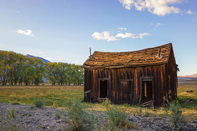 Abandoned Photograph - Owens Valley Shack by Priya Ghose