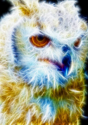 Manley Mixed Media - Owl - Filter Effect Manipulation by Gina Lee Manley