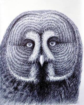 Owl Portrait Original by Rick Hansen