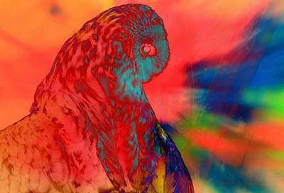 Owl Mixed Media - Owl Zen by Dan Sproul