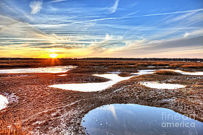 Oyster Beds At Sunset Print by John Wollwerth