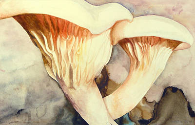 Oyster Mushrooms Original by Alison Hamil