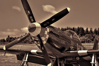 P-51 Mustang Speedball Alice Fighter Print by David Patterson