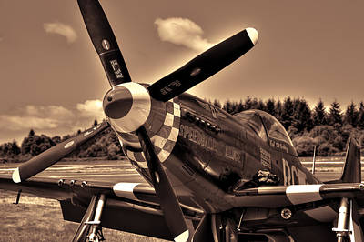 P-51 Speedball Alice Print by David Patterson