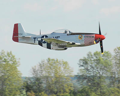 Gathering Photograph - P-51d Mustang Shangrila by Alan Toepfer