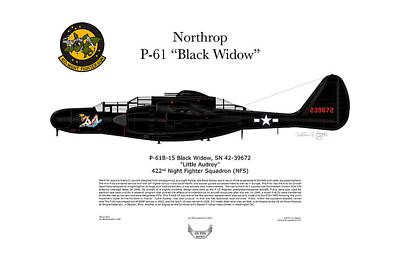 P-61b Black Widow Print by Arthur Eggers