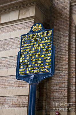 Pa-129 The Wistar Institute Of Anatomy And Biology Print by Jason O Watson