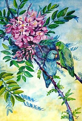 Pacific Parrotlets Print by Zaira Dzhaubaeva