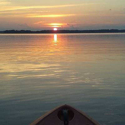 Paddle Board Sunset Print by Lisa Wooten