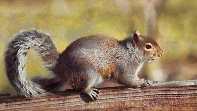 Squirrel Mixed Media - Painted Squirrel In Autumn by Dan Sproul