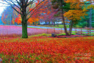 Painting Like Frontyard In Autumn Print by Tina M Wenger