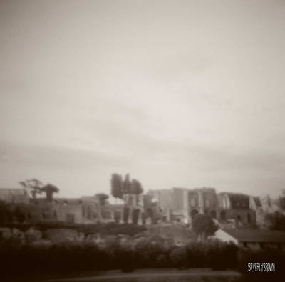 Urban Scenes Photograph - Palatine Hill And Forum by Beverly Brown Prints