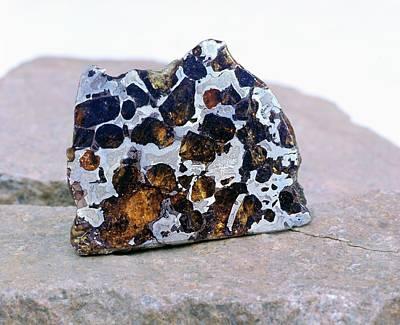 Interior Still Life Photograph - Pallasite Meteorite Fragment by Detlev Van Ravenswaay