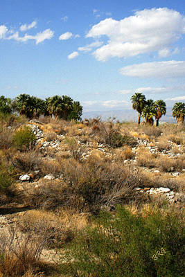 Palm Springs Indian Canyons View  Print by Ben and Raisa Gertsberg